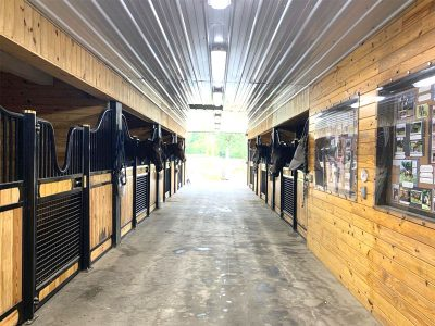 dressage horse training boarding orange county ny